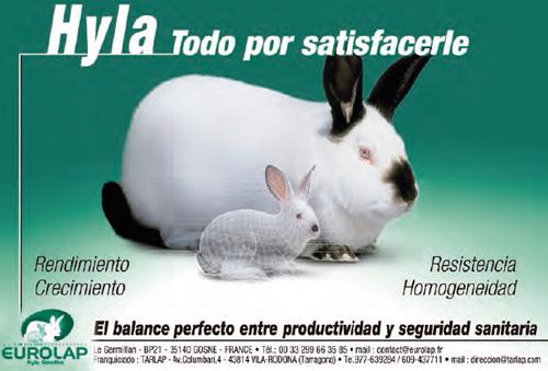 En cunicultura es rentable la calefacci n cuninews - Calefaccion mas rentable ...