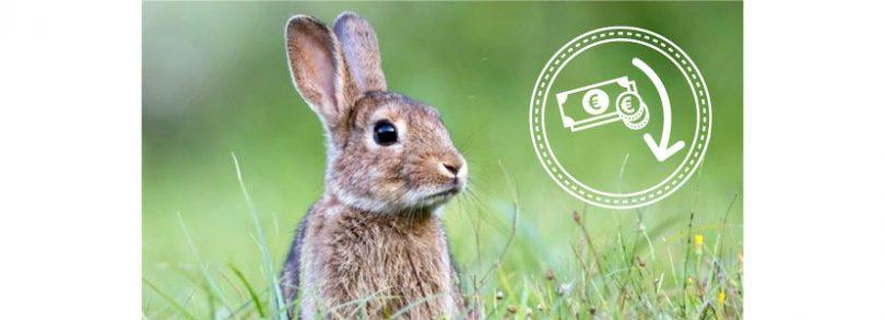 Indignación por la bajada de precios del conejo