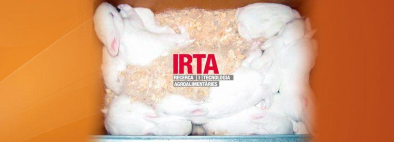 Jornada técnica IRTA